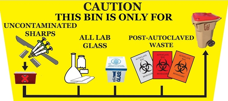 Laboratory Waste Removal and Recycling is a Sensitive Job