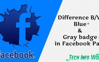 Difference Between Blue and Gray badge on Facebook Page?